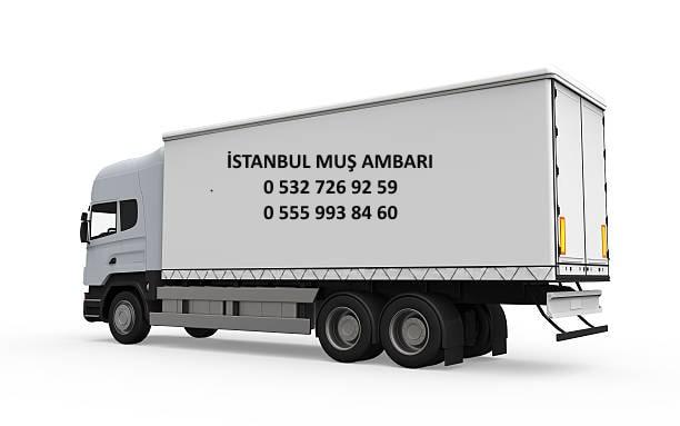 istanbul muş ambarı